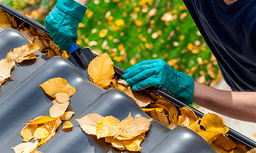 Professional cleaning leaves out from blocked gutter
